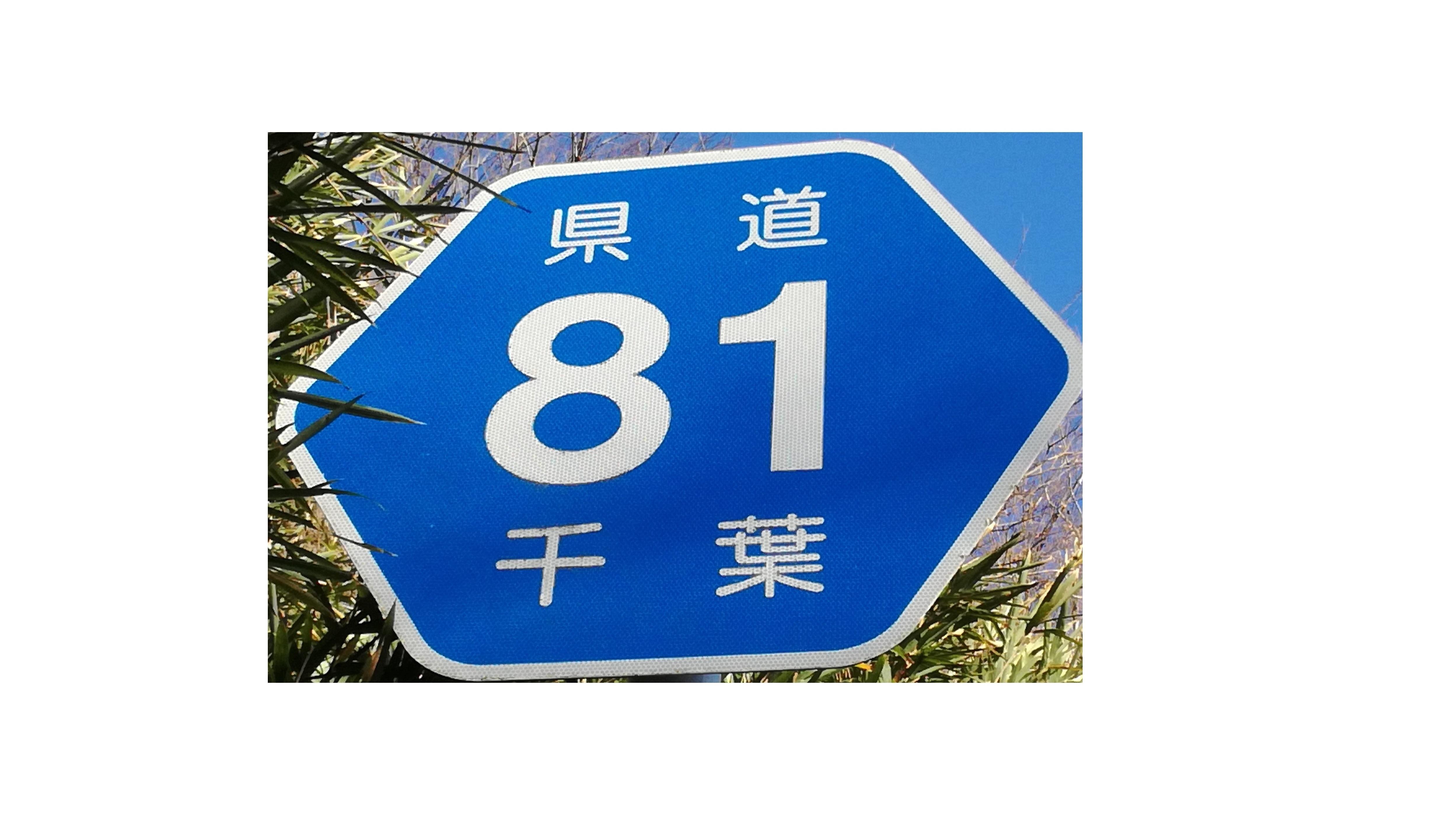 【清澄養老ライン】千葉 県道81号