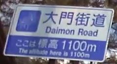【大門街道】中速ワインディングロード【長野県】