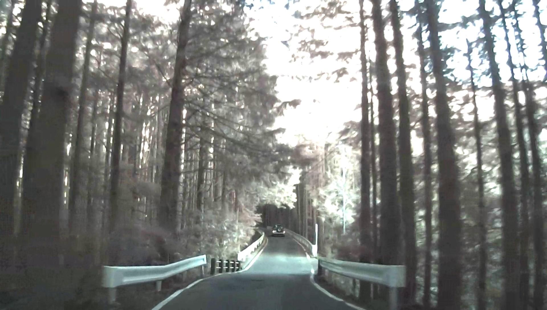 【国士峠】静岡県道59号【険道】