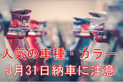 人気車種_人気カラー